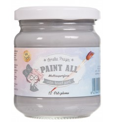PAINT ALL 12 GRIS PLOMO - 180 ML