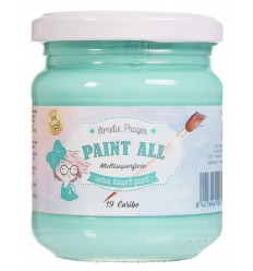 PAINT ALL 19 CARIBE - 180 ML