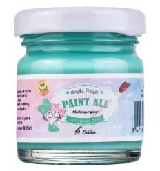 Paint All 19 Caribe - 30 ml