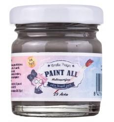 Paint All 29 Acero - 30 ml