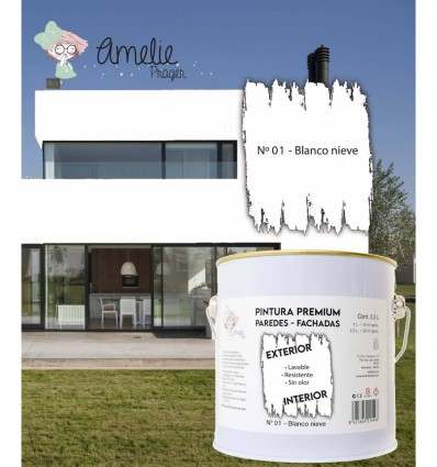 Pintura Paredes Premium int - ext 01 Blanco Nieve